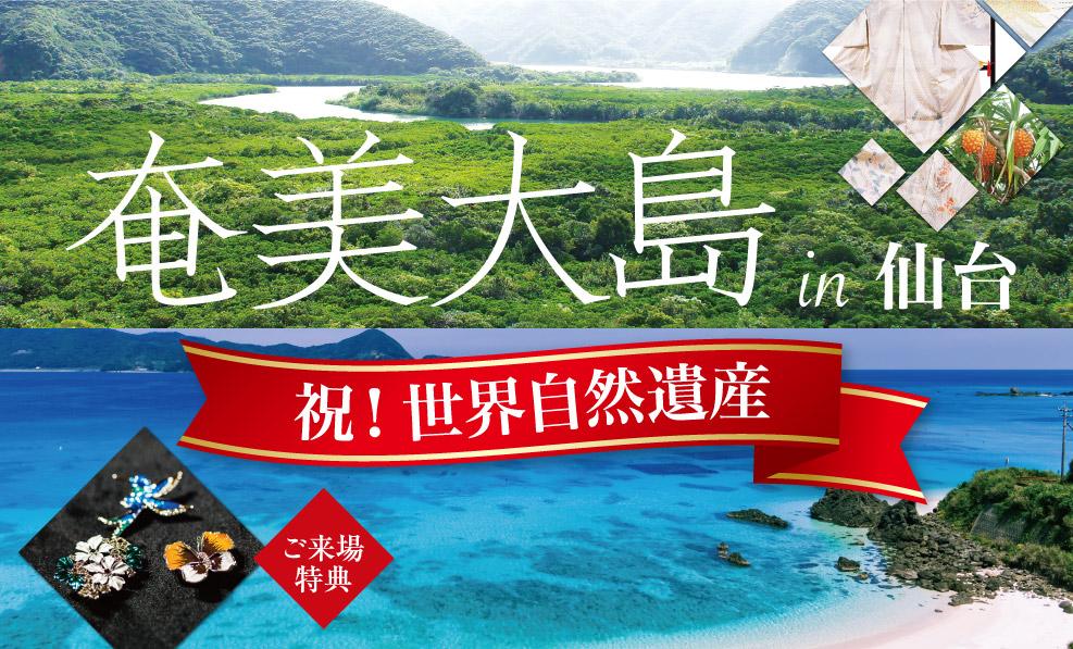 日本和装 【奄美大島 in仙台】祝!世界自然遺産